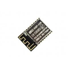 ESP-12S Wifi Module  ESP8266 (ER-CCW08266S)