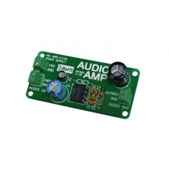 AudioAMP Board  (MIKROELEKTRONIKA)