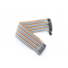 40 Pin Dual Male Splittable Jumper Wire - 200mm (ER-PCW40220P)