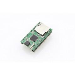 Music Player Module WT5001 (ER-AMP5001WT) MP3/WAV, RS232/USB