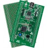STM32F0DISCOVERY ( STM32F051R8T6 Cortex-M0 )