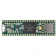 Teensy 3.6 (PJRC) 32 bit 180MHz ARM Cortex-M4 processor, 3.3V